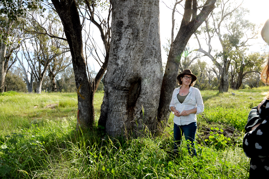 Tania Marshall beside a scar tree.